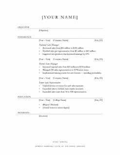 Elegant sales manager resume, Word