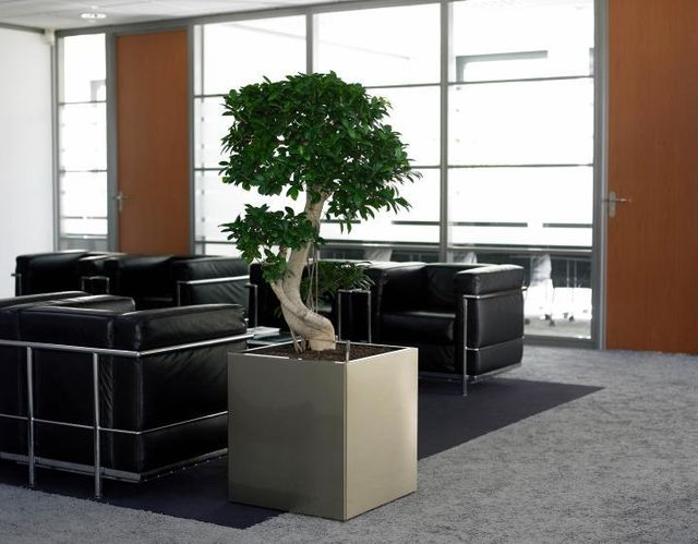 Zen Office Decorating Ideas