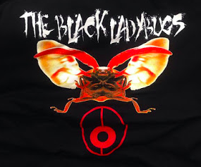 Black Ladybugs - Attack Bug Tee