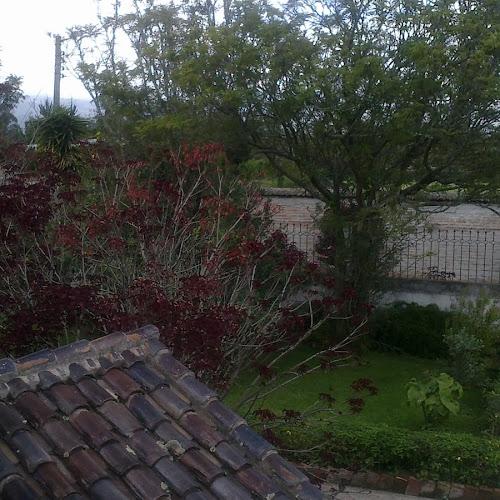 Los bellos jardines de alrededor