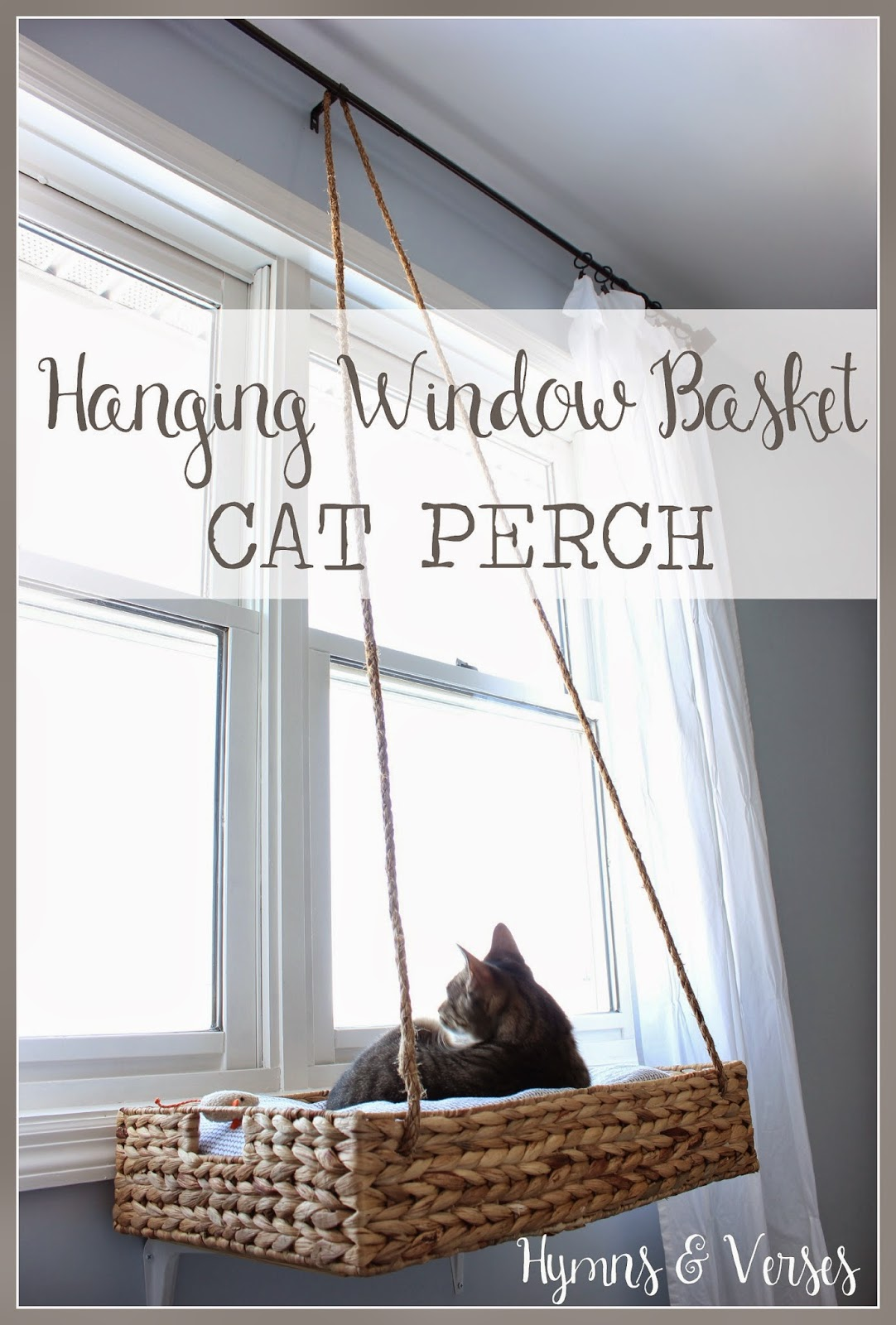 Hymns and verses diy hanging window basket cat perch for How to build a cat perch