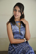 Khenisha Chandran at Jaganatakam press meet-thumbnail-19