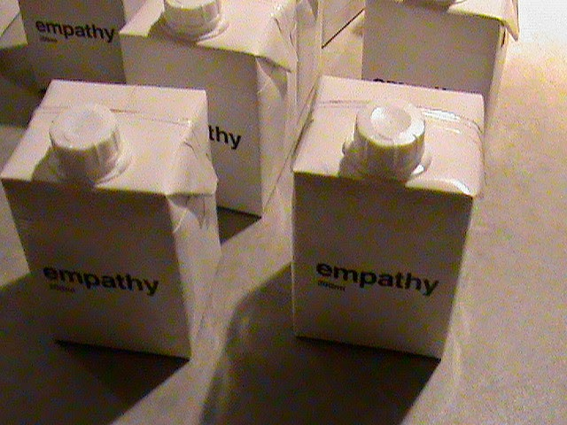 CEM Toolbox: Empathy, Journey Mapping, and the Platinum Rule