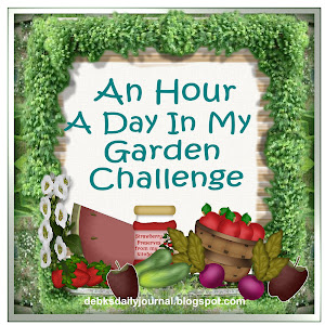 An hour a day in my Garden challenge