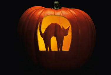 Gold star daily world news online simple halloween for Cat carved into pumpkin