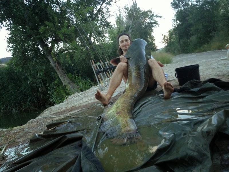 как ловить пеленгаса в реке