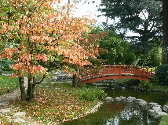Arte de la jardiner a mi filosof a del jard n mis estilos preferidos mi forma de trabajar - Jardines puente cultural ...