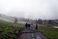 Mt. Rainier sunrise hiking trail head in fog