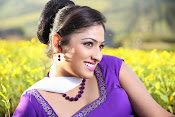 Hari priya photo shoot among yellow folwers-thumbnail-9