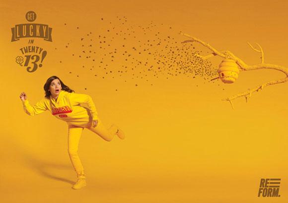 Reform 2013 Campaign