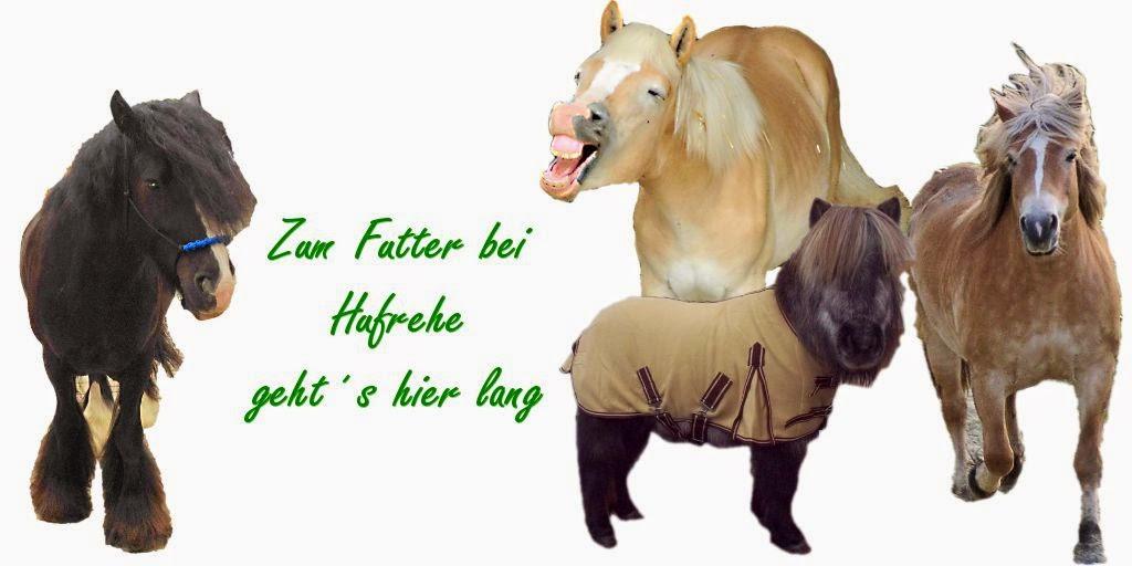 http://www.tierheilkundezentrum.de/shop/Pferde-Ponys-Esel-fuettern/Mein-Konzept-bei-/Hufrehe:::425_194_351.html