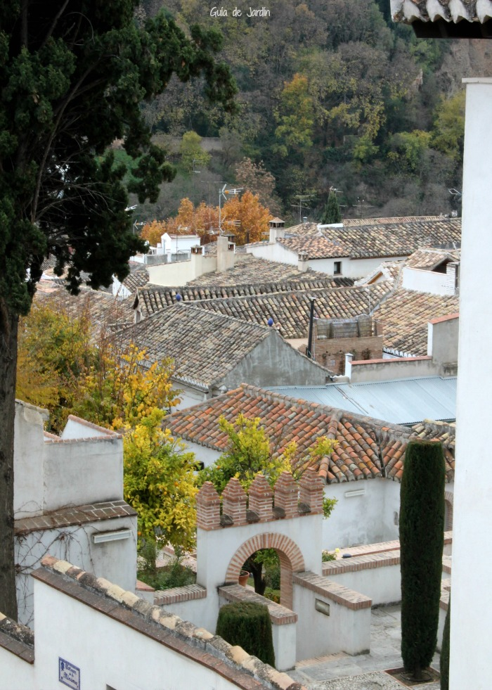 Tejados en Granada