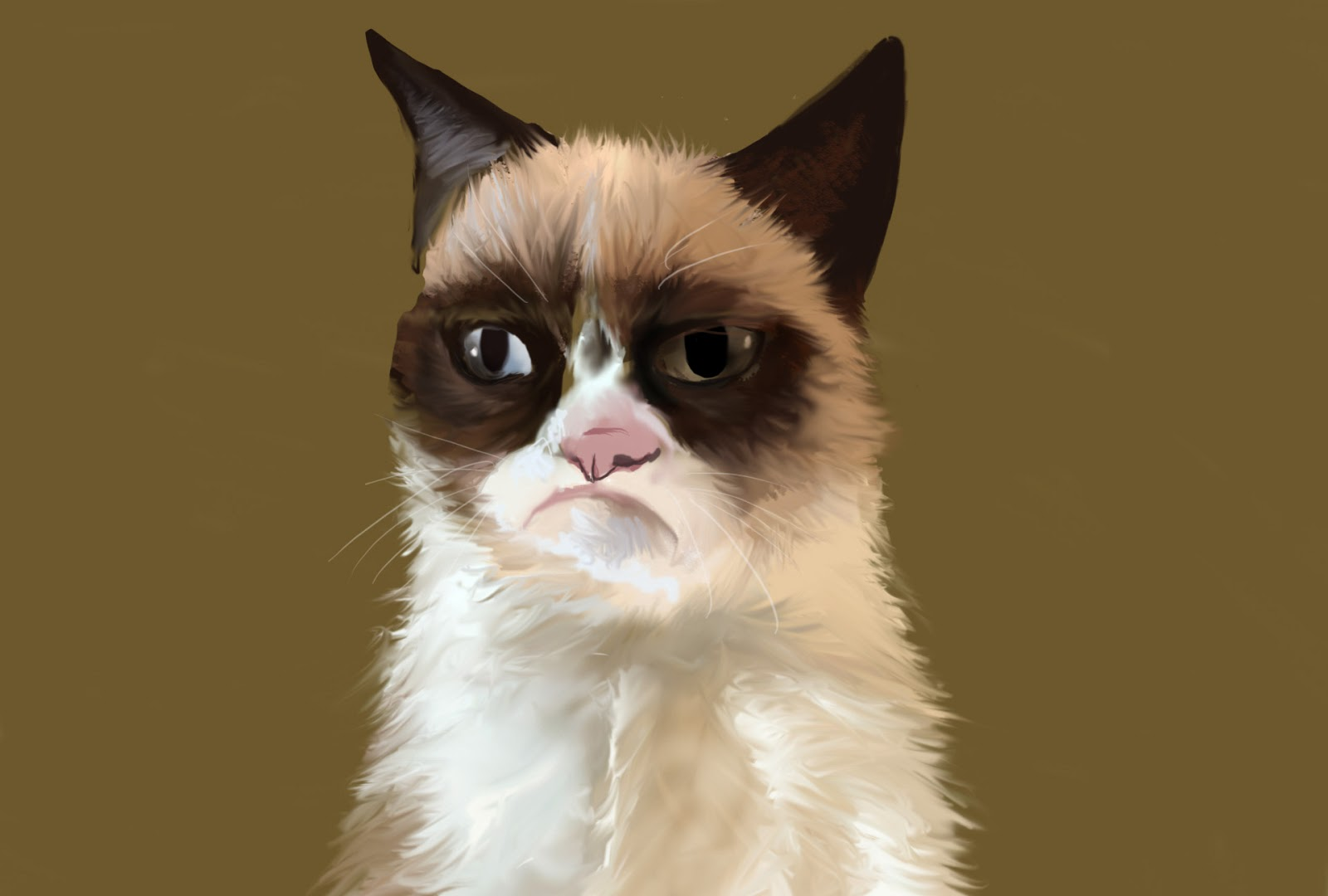 A jury awarded 710000 in damages for trademark and copyright infringement to Grumpy Cat Limited the entity holding the rights to the Internet cat