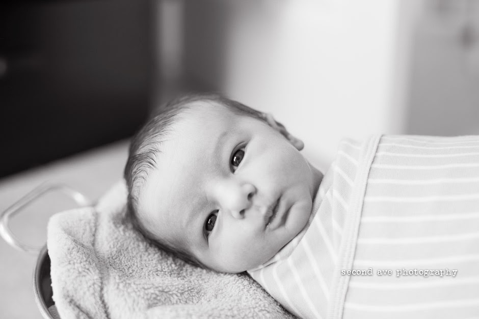 newborn photographer, Virginia photographer, family photographer, lifestyle, round hill,