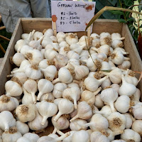 VT Garlic and Herb Festival Bennington_New England Fall Events