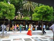 En la Plaza Nueva