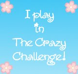The Crazy Challenges