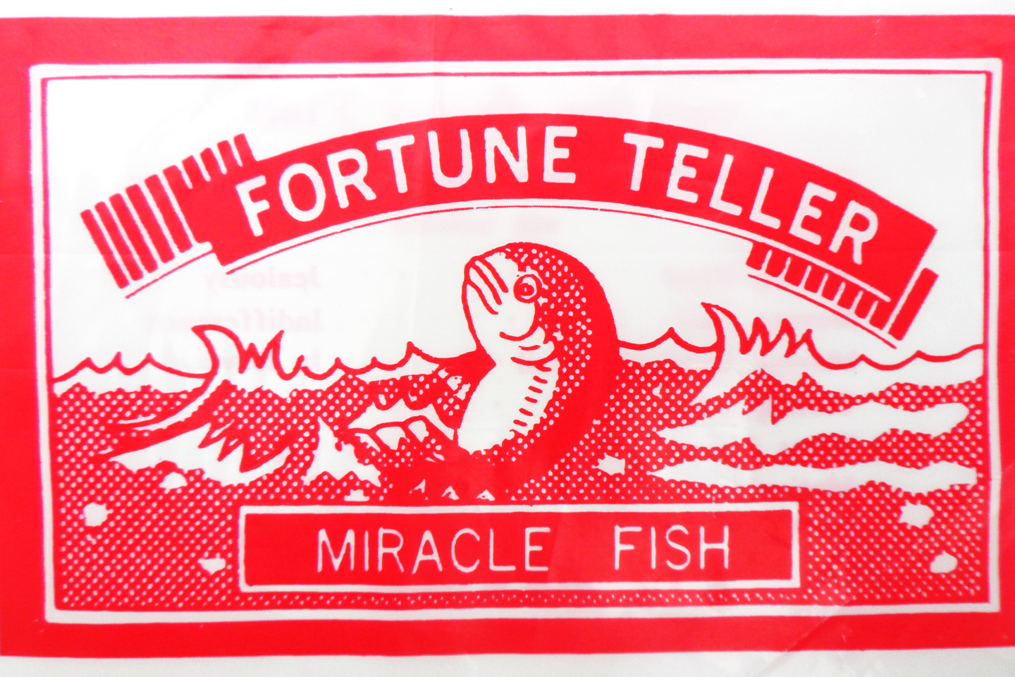 samhain moon meet the fortune telling fish