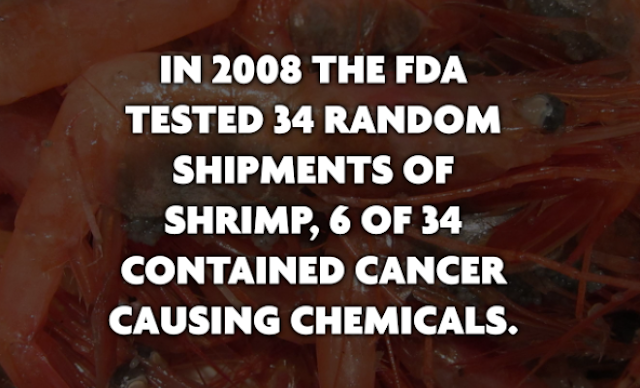 FDA Found Shrimp Contained Cancer Causing Chemicals