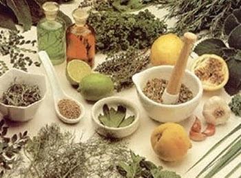 Virgem, os produtos da terra, fitoterapia, a farmácia da natureza