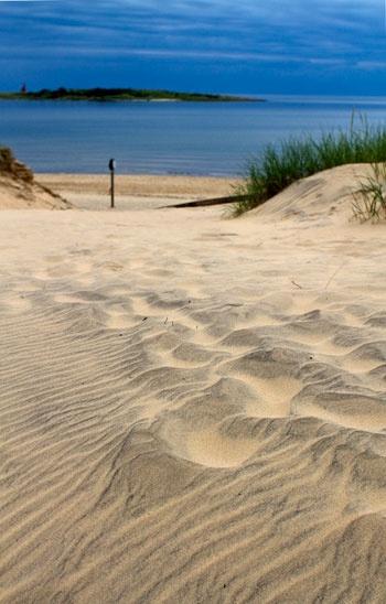 Sweden beaches bdsm picture 77