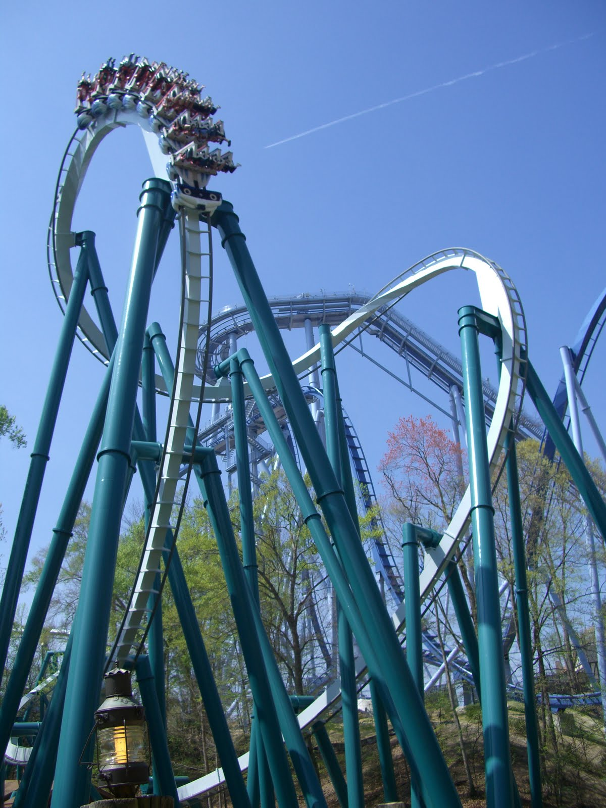 Passion flower life pictures of the roller coasters at - Roller coasters at busch gardens ...