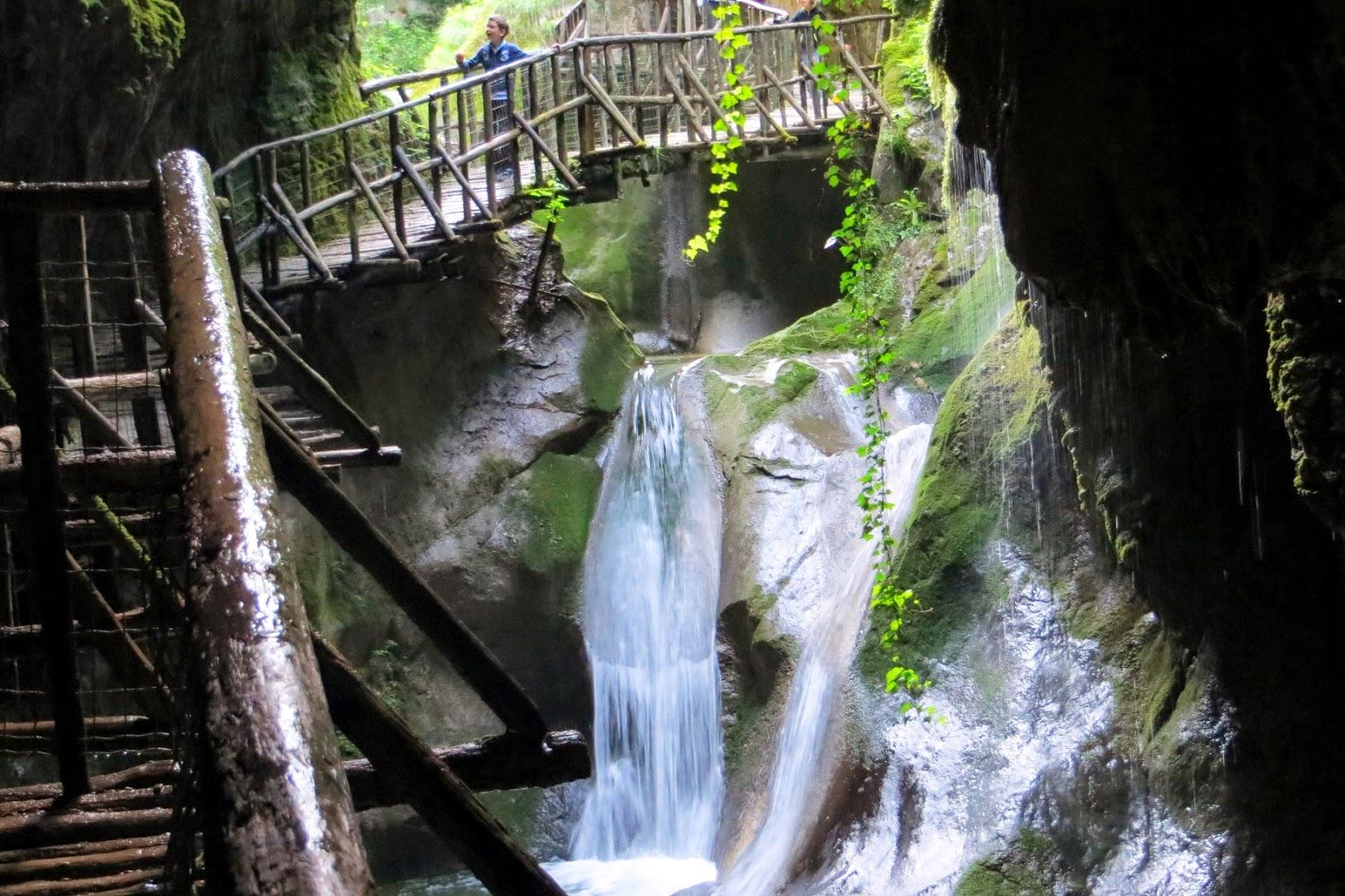 escursione sul bosco del cansiglio a malga mezzomiglio
