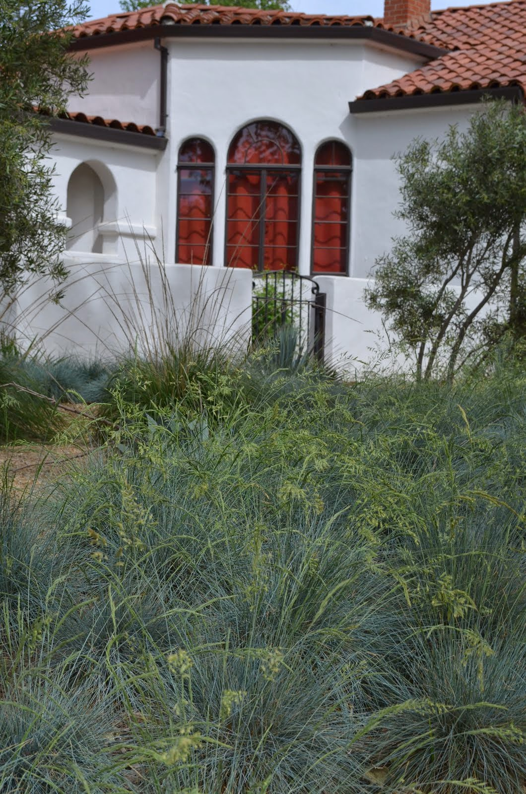 Tour Home with Ornamental Grass