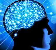 10 Cara Sederhana yang Ampuh Meningkatkan Kinerja Otak