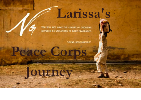 Larissa's Peace Corps Journey