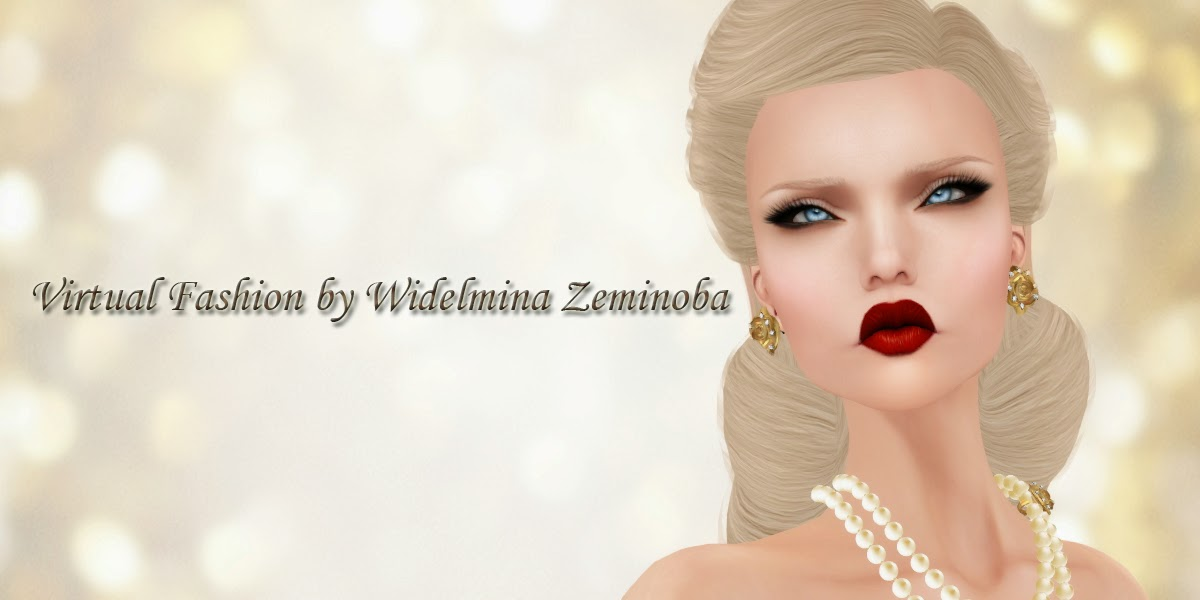 Virtual Fashion by Widelmina Zeminoba