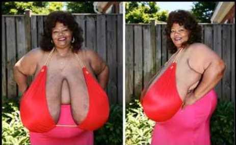 images881630 NormaStitz nguckhung1 Ảnh nóng những bộ ngực siêu khủng lớn nhất thế giới