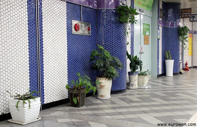 Plantas en la estación de Yeongdungpo, del metro de Seúl