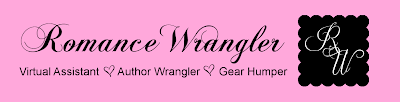 Romance Wrangler | I'll wrangle, you write