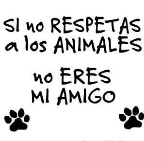 Amo a los perros