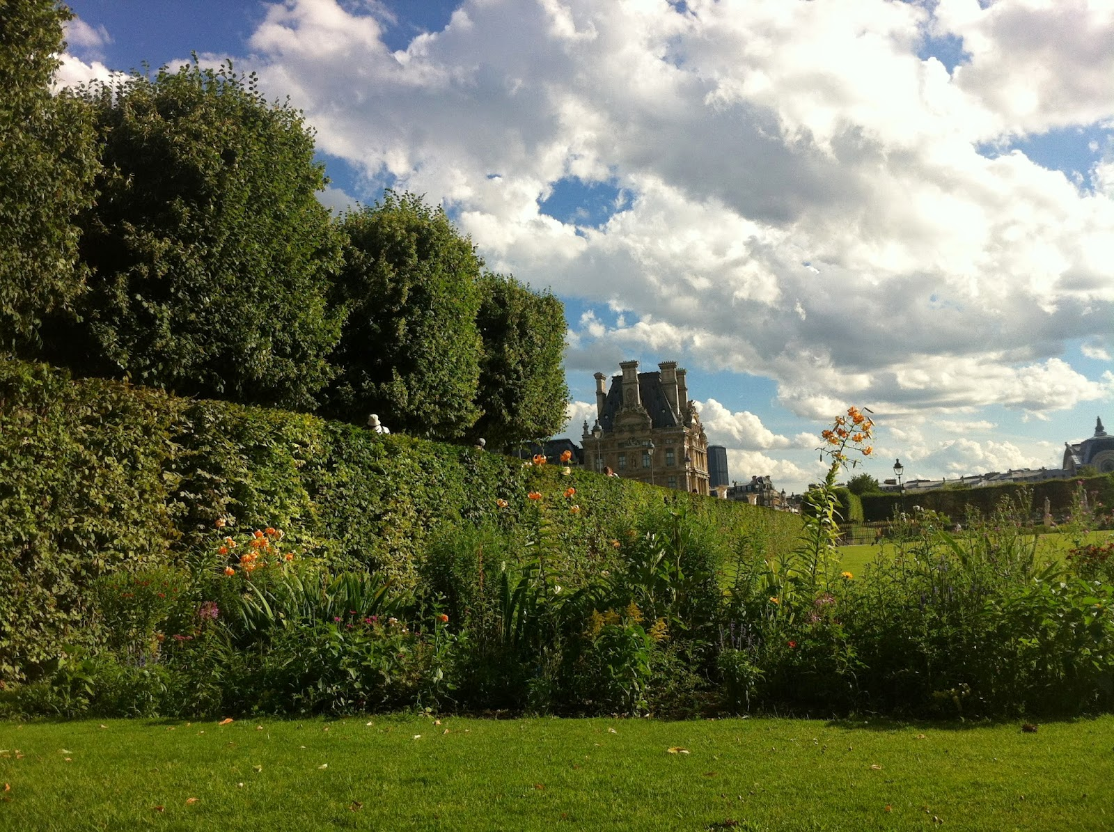 Tuilerie bahçesi yeşillik