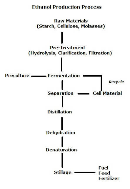Ethanol production, alcohol fermentation