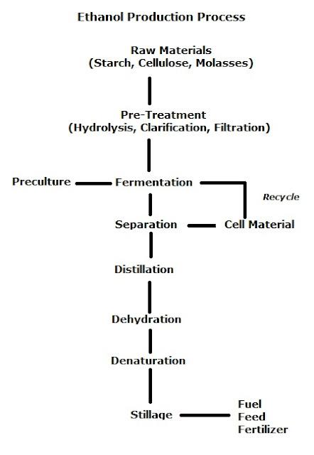 Ethanol production, alcohol fermentation