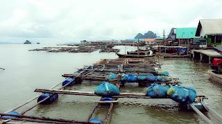 Panyee Bungalow - Phang Nga Bay