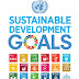 Developing nation and their challenges for SDGs
