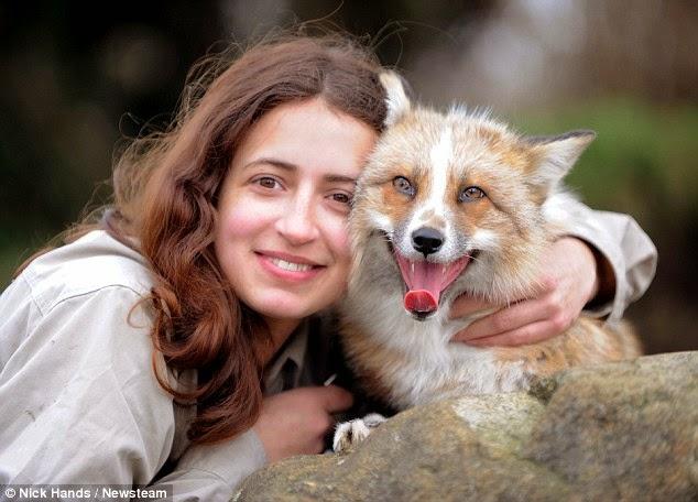 صورة لايما والثعلب