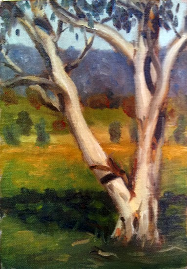 Oil painting of a young snow gum, with paddocks and a low mountain range in the background.