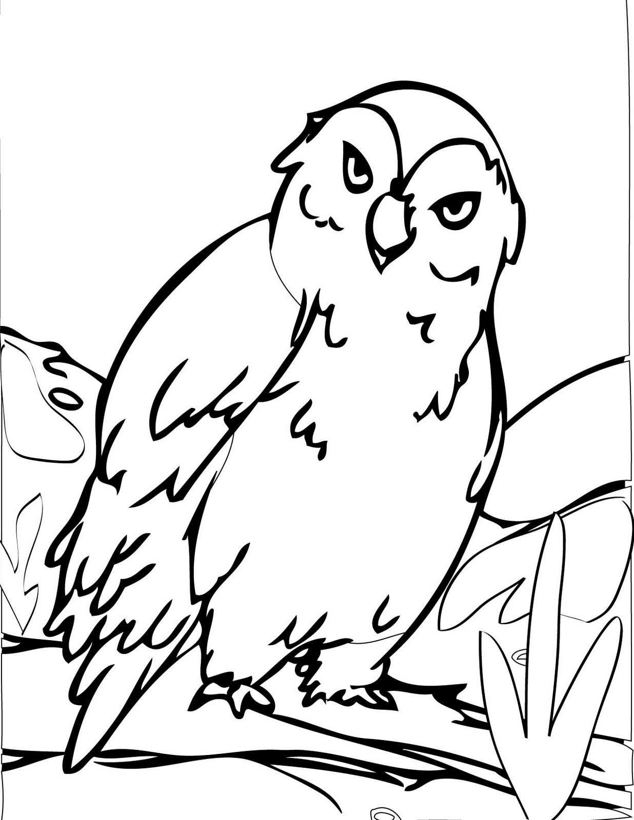 Beautiful Senin Januari With Winter Animal Coloring Pages