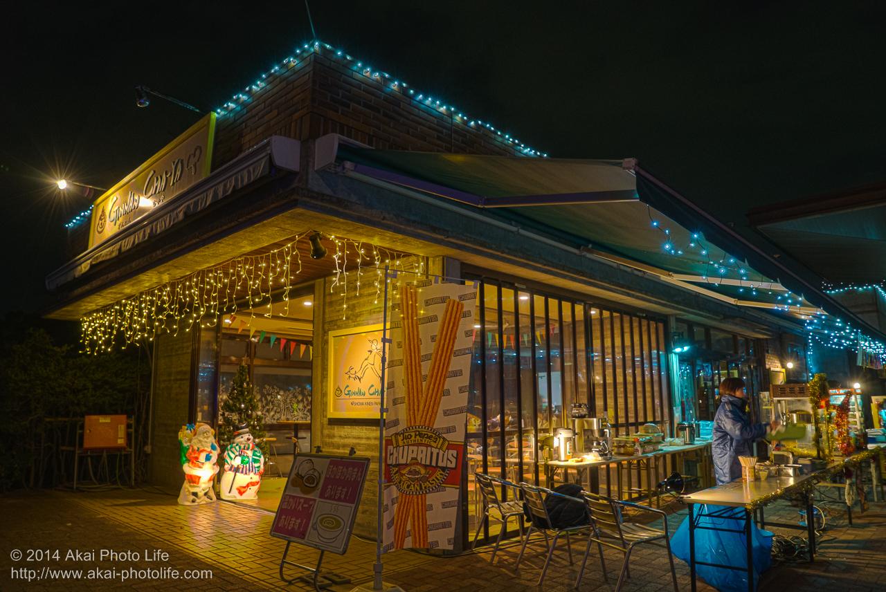 国営昭和記念公園のイルミネーション(立川口の売店)