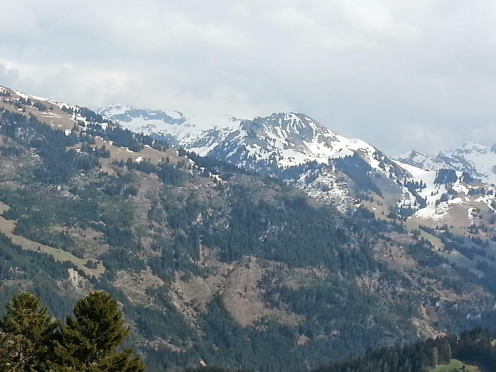 Meus vizinhos na Suíça.
