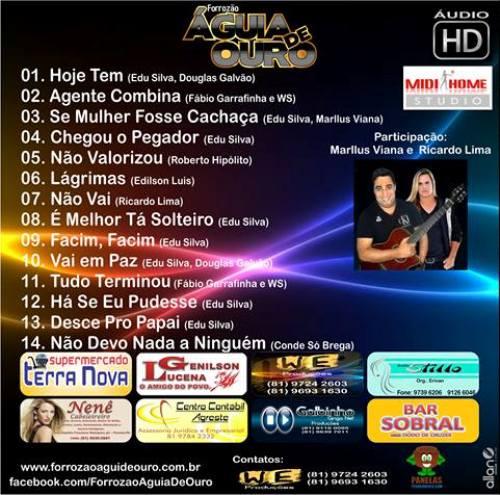 Musicas do CD Forrozão Águia de Ouro Promocional 2013