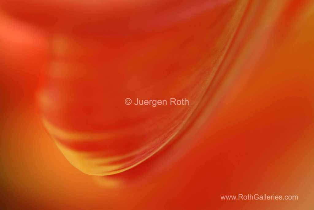 http://juergen-roth.artistwebsites.com/art/all/abstracts/all