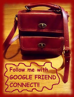 ♥ ♥  Follow me with GFC !!