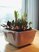 Blomplantering i keramik