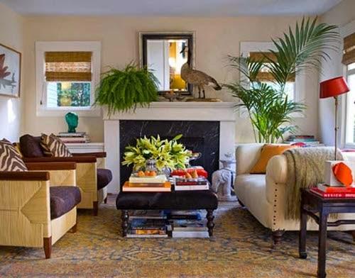 indoor garden living room